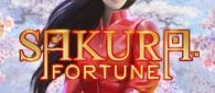Слот— Sakura Fortune